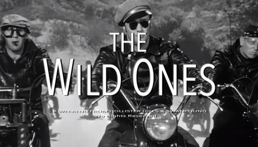 The Viewing Presents: The Wild Ones